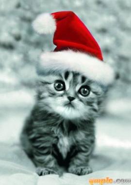 se acerca la Navidad